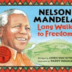 14)Long Walk To Freedom 9780230013858